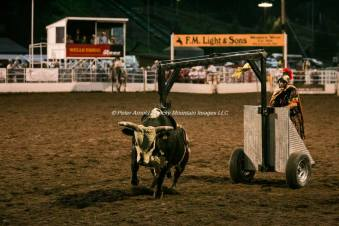 Steamboat Springs Rodeo